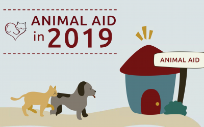Animal Aid in 2019: A Year in Review