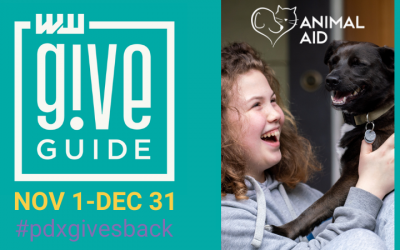 Our 2020 Give!Guide Campaign and Partners